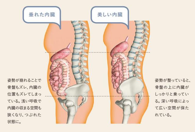 内臓調整によって体液循環がよくなり自然治癒力が向上するから